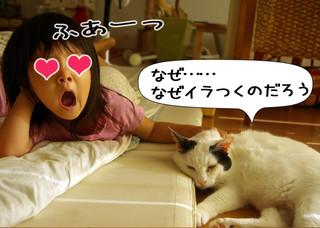 Shirokuro1212_3