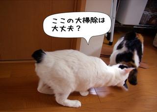 Shirokuro1212_10