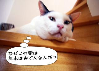 Shirokuro1212_11
