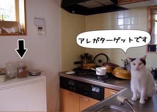 Shirokuro1212_9