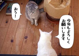Shirokuro1301_1