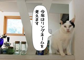 Shirokuro1301_2