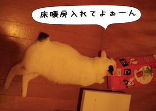Shirokuro1301_9
