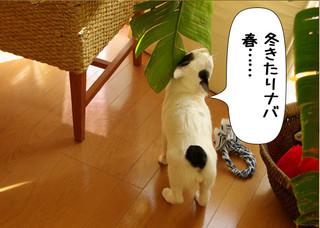 Shirokuro1302_4