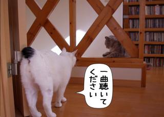Shirokuro1303_5_2