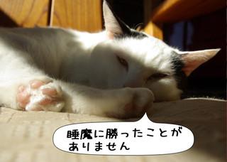 Shirokuro1303_6