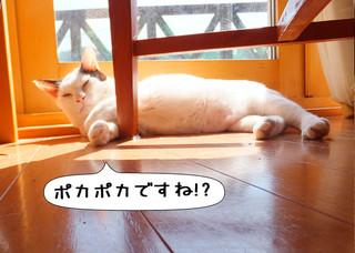 Shirokuro1304_3