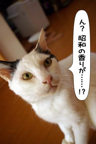 Shirokuro1304_6