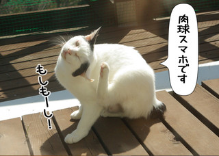 Shirokuro1304_8