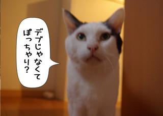 Shirokuro1304_9