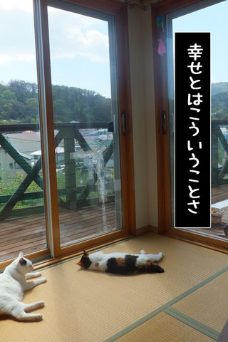 Shirokuro1305_1