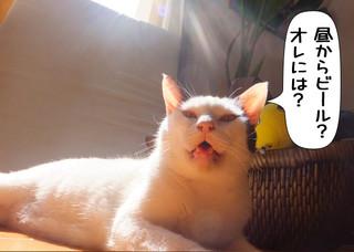 Shirokuro1305_2