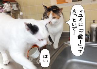 Shirokuro1305_3