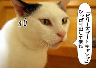 Shirokuro1305_4