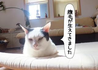 Shirokuro1305_9