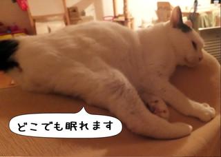 Shirokuro1306_10