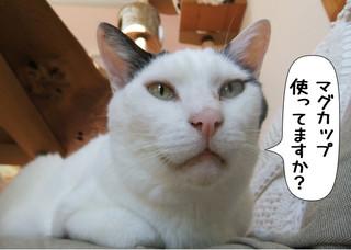 Shirokuro1306_2
