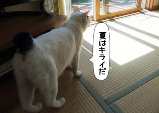 Shirokuro1306_3