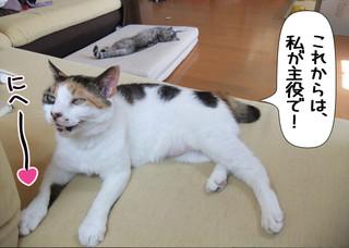 Shirokuro1306_4