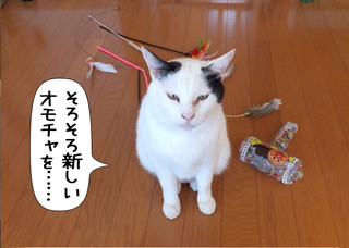 Shirokuro1306_7