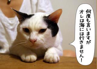 Shirokuro1308_7