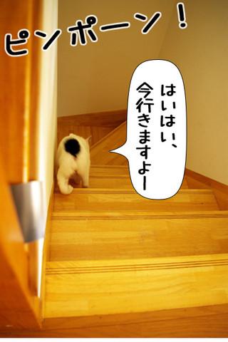 Shirokuro1309_3