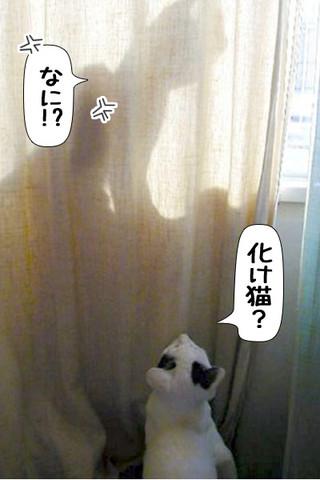 Shirokuro1310_5