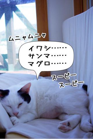 Shirokuro1310_6