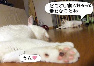 Shirokuro1310_8
