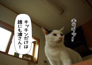 Shirokuro1311_10
