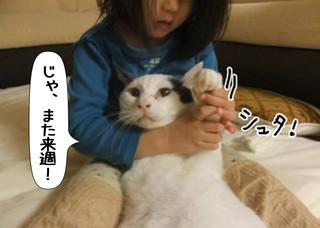 Shirokuro1311_5