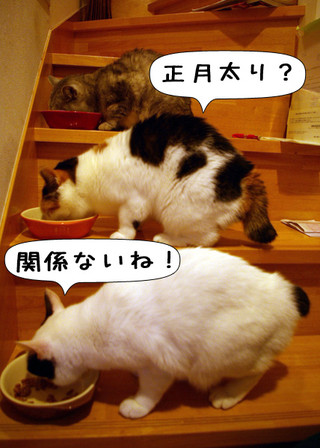 Shirokuro1401_2