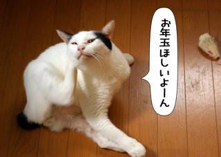 Shirokuro1401_3