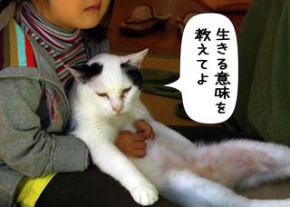 Shirokuro1401_10
