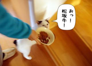 Shirokuro1401_12