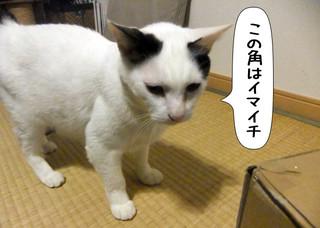 Shirokuro1401_5