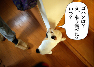 Shirokuro1401_6