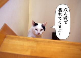 Shirokuro1401_7
