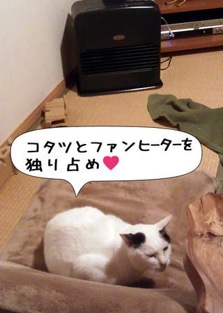 Shirokuro1401_8