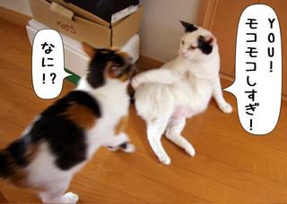 Shirokuro1401_9