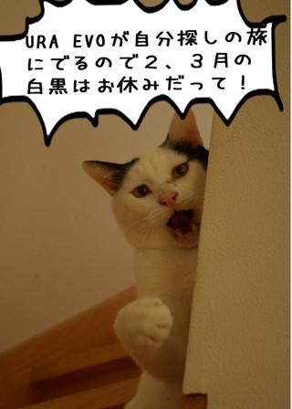 Shirokuro1402_1