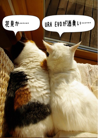 Shirokuro1404_3