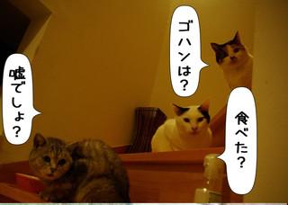 Shirokuro1402_2