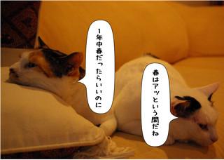 Shirokuro1405_3