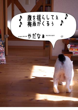 Shirokuro1405_4