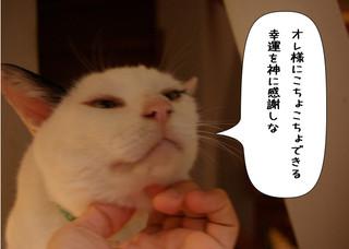 Shirokuro1406_3