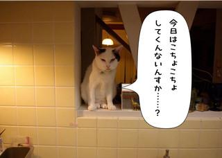 Shirokuro1406_4