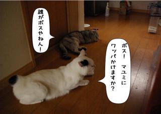 Shirokuro1402__2