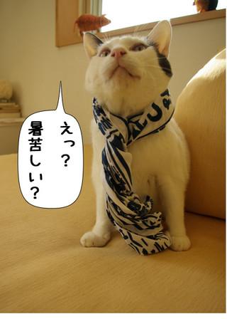 Shirokuro1408_4