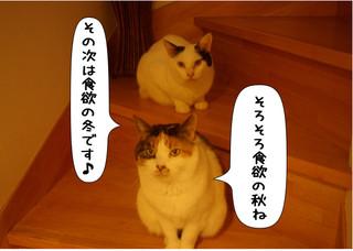 Shirokuro1408_5